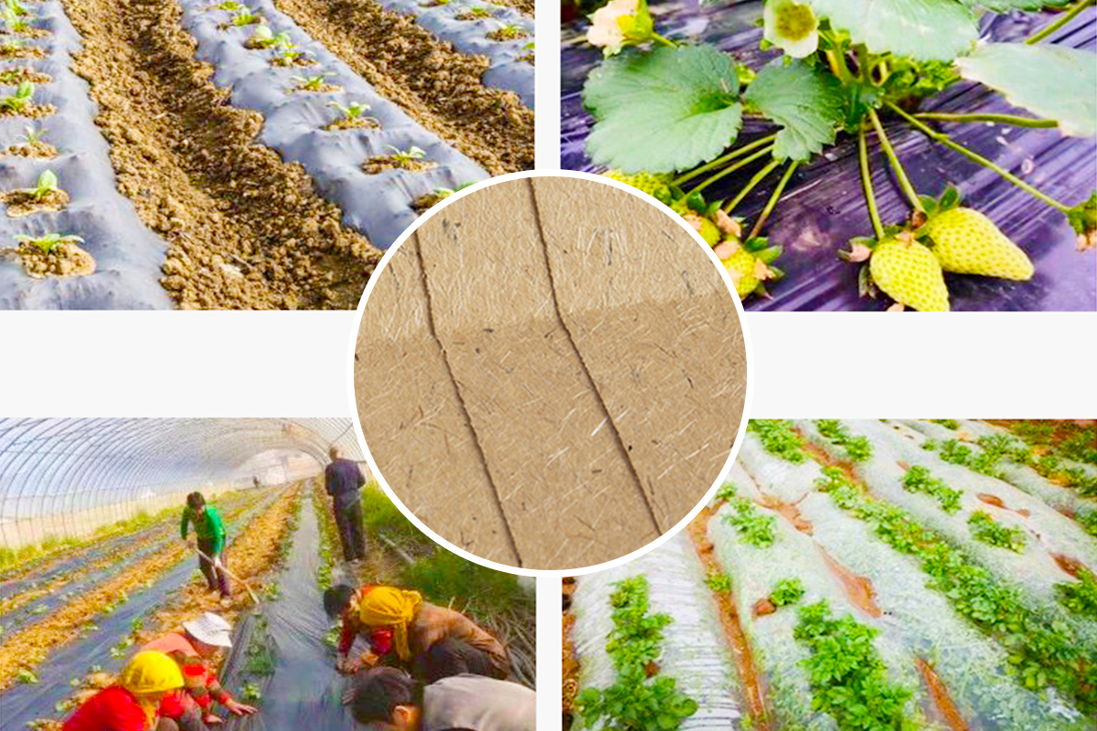 Bio-degradable agricultural paper